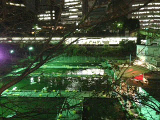 夜散歩 釣堀-1.jpg