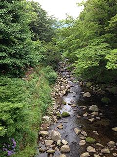 天城湯ヶ島08 捕1 男橋の眺め.jpg