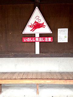 天城湯ヶ島19 捕1 浄蓮の滝 いのしし注意.jpg