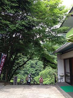 天城湯ヶ島21 捕1 浄蓮の滝 入口.jpg