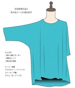 05 300 ボヘミア 変わり織りボーダー.jpg