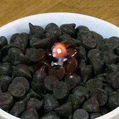 チョコレートキャンドル 06 おお?.jpg