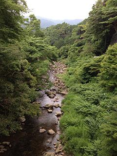 天城湯ヶ島06 捕1 女橋の眺め.jpg